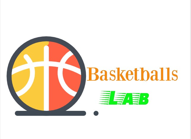 Make Your Basketball Game More Professional With BasketballsLab